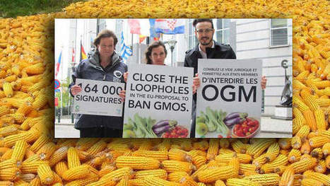 #Latvia and #Greece First Out as #EU Introduces a #GMO Opt-out Law - Newswire | Messenger for mother Earth | Scoop.it