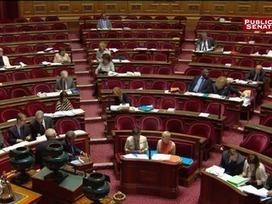 Loi travail : le Sénat supprime le contrat de génération   Culture Mission Locale   Scoop.it