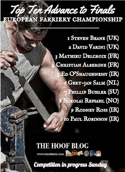 Fran Jurga`s Hoof Blog: Euro Farrier Champions: Top Ten Finalists and Meet Dutch Champion Gert-Jan Salm | Hoofcare and Lameness | Scoop.it