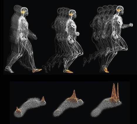 Entrenamiento trail running: Propiocepción del corredor. Seis ejercicios específicos para el pie, por Xavi Méndez. | trailrunning | Scoop.it