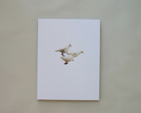 "Carolyn Drake - check her book ""Wild Pigeon"" | Fotografie | Scoop.it"