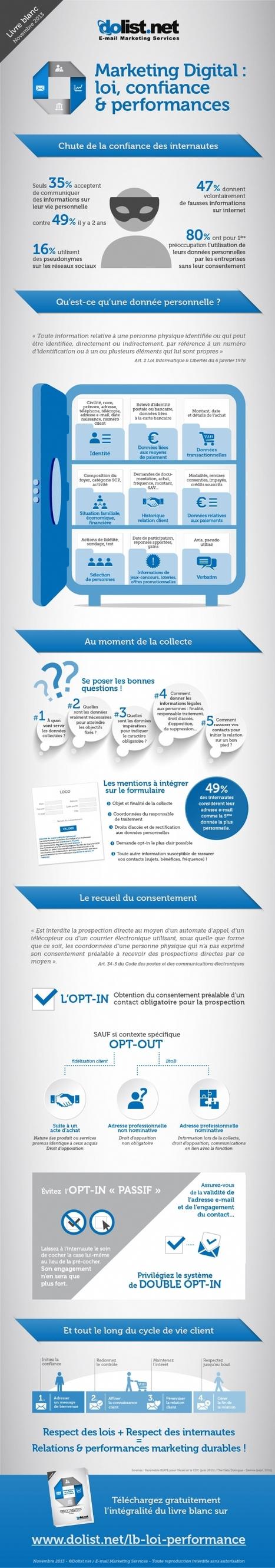 Infographie | 47% des internautes donnent volontairement de fausses informations | Actua web marketing | Scoop.it