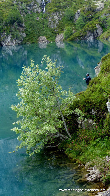 Ouverture de la pêche en lacs de montagne dans les Hautes-Pyrénées   Vallée d'Aure - Pyrénées   Scoop.it