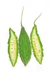 PANCRÉAS: Le melon amer, un composé naturel contre le cancer ... - santé log | Médecines Traditionnelles et culturelles | Scoop.it