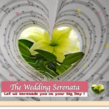 Perfect music for your wedding   Live Band For Wedding Singapore   Scoop.it