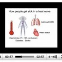 Harvard physician warns of climate change health hazards | Climate ... | Climate | Scoop.it