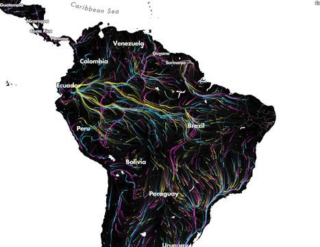[INTEREACTIF] Migrations in Motion - TheNatureConservancy | Nouvelles Tendances Mondiales | Scoop.it