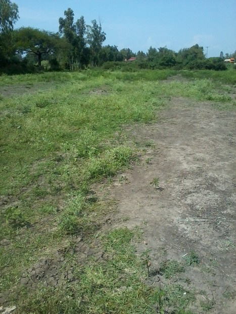 west kenya real estate:0.28 ha land for sale in Rabuor - | Current news across the globe | Scoop.it