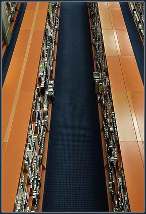 Quelle place en bibliothèque pour les livres autoédités ? | BibliUnivers (Licence Pro) | Scoop.it