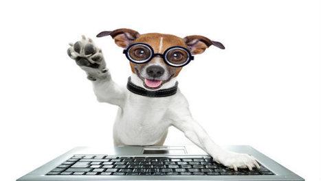 Top 10 Website Eyesores to Avoid | VerticalResponse Blog | B2B Marketing and PR | Scoop.it