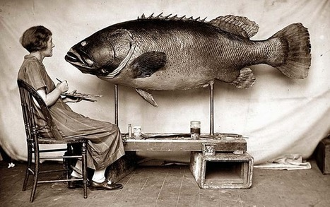 Museum captures the art of fishing | @FoodMeditations Time | Scoop.it