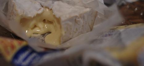Les États-Unis vont revoir leurs règlements sur le fromage au lait cru | Monde Agricole | Scoop.it