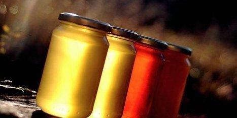 La chambre d'agriculture du Gard fait son miel de l'IGP Cévennes | Elevage | Scoop.it