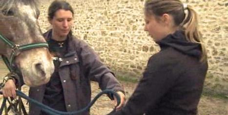 Lesmétiers.net : Fiches métiers - Diplômes - Formations - Orientation en Ile-de-France - Accueil | Sitographie pour l'orientation | Scoop.it