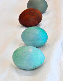 How to Make Natural Easter Egg Dye: Organic Gardening | Maverly Lands | Scoop.it