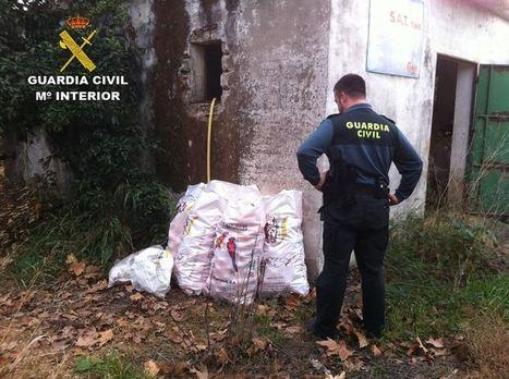 Diez detenidos acusados del robo de casi 3.000 kilos de fruta en la zona del Condado | TIPOS DE ROBO | Scoop.it