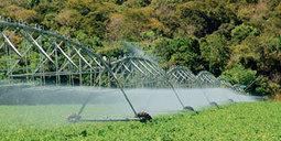 Manejo da irrigação | Revista Pesquisa FAPESP | Imagem Agronegócio | Scoop.it