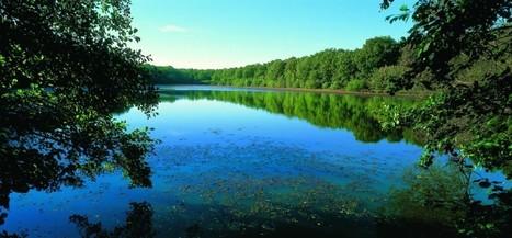 Les Lacs de la Forêt d'Orient sur TF1   Escapade en Champagne ® Actualités   Scoop.it