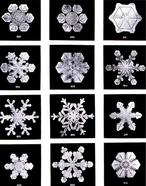 sneeuw | jade | Scoop.it