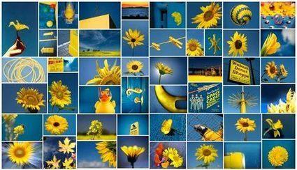 Multicolr Search Lab: la búsqueda multicolor de imágenes | Microsiervos (Arte y Diseño) | Pedalogica: educación y TIC | Scoop.it
