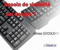 La vie du référenceur SEO avant et après Google Penguin 2.1 - #Arobasenet | Inbound Marketing | Scoop.it