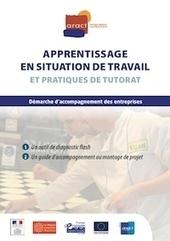Apprentissage en situation de travail et pratiques de tutorat   compétences   Scoop.it