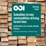 Subsidies for Deforestation-driving Commodities Dwarf Conservation Finance New Report - Ecosystem Marketplace | GarryRogers Biosphere News | Scoop.it