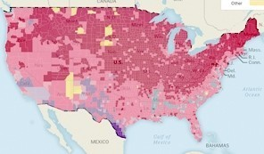 Census count finds decreasing white population in 15 states | Regional Geography | Scoop.it