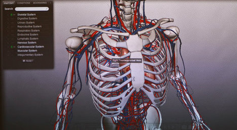 The Human Anatomy, Animated With 3-D Technology | Information Technology Learn IT - Teach IT | Scoop.it