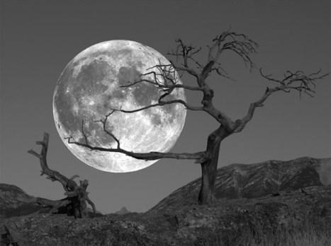 Capturer la lune est un art délicat | L'oeil du photographe: actualité, évènements, matériel photo, conseil de réalisation | Scoop.it