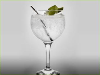Preparar un gin tonic | Cata de gin tonics | Scoop.it
