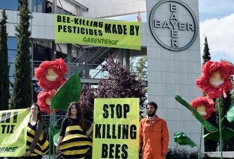 Pesticides : la stratégie ʺdeux poids, deux mesuresʺ du groupe Bayer   Environnement et développement durable, mode de vie soutenable   Scoop.it