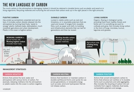 Carbon is not the enemy | Sustainable Complex Coevolutionary Systems Engineering | Scoop.it