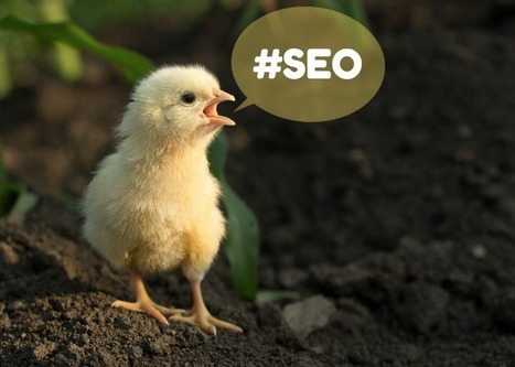 50 Tweetable Tips for Understanding SEO | Links sobre Marketing, SEO y Social Media | Scoop.it