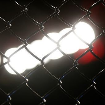 Female transgender MMA fighter being investigated | READ WHAT I READ | Scoop.it