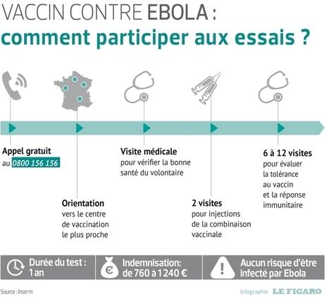 Recherche volontaires pour un vaccin contre Ebola | SANTE | Scoop.it