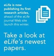 Anticipated new journal, eLife, publishes first articles | eLife | The new funder-researcher collaboration and open-access journal for outstanding advancements in life and biomedical research | Science ouverte - Open science | Scoop.it