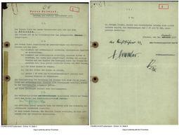 Lebensborn, l'incroyable histoire des enfants SS - LExpress.fr | TPE: lebensborn | Scoop.it