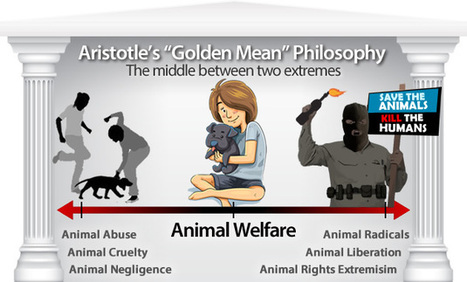 What is Animal Welfare and why is it important? | National Animal Interest Alliance | Taking a Stand | Scoop.it
