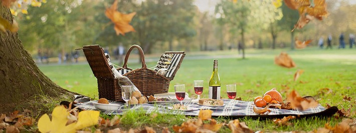 Picnic in a Royal Park - DUKES Hotel, London | Posh Picnics | Scoop.it