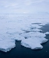 Polar wander linked to climate change | Climate change challenges | Scoop.it