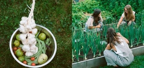 Victory Gardens helps to grow urban gardens in Vancouver | Urban Food Production | Scoop.it