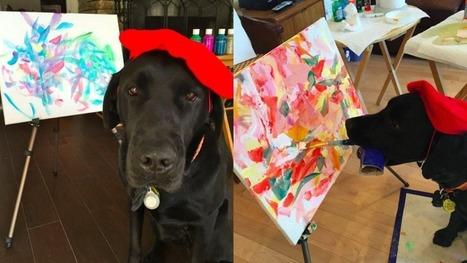 Dog wears elegant beret, paints masterpieces like a pro | enjoy yourself | Scoop.it