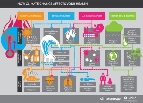 Four Infographics That Show How Climate Change Is Affecting Your Health | Développement durable et efficacité énergétique | Scoop.it