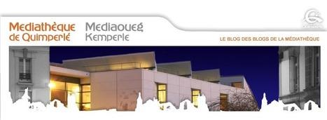 Médiathèque de Quimperlé: Découvrez un FabLab et des imprimantes 3D à la médiathèque | Imprimantes 3D | Scoop.it