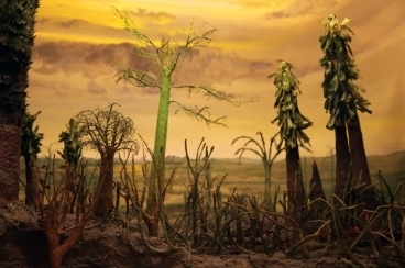 Did highly acidic rain cause the end-Permian mass extinction? | Amazing Science | Scoop.it
