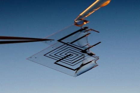 Born to die: how self-destructing electronics will transform medicine, war, and more | Generation Z | Scoop.it