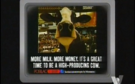 FOX Reporters Fired For Reporting the Truth About Monsanto's Milk | Random | Scoop.it