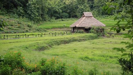 Au Laos, le pari difficile du tourisme durable - Hebdo - RFI   Tourisme équitable, solidaire et responsable   Scoop.it