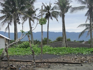 Climate Change Adaptation in Coastal Communities | Climate | Scoop.it